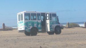 Cofete Beach Bus