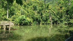 Khlong Chak Hike, Koh Lanta