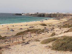 Surf Beach El Cotillo