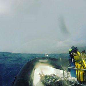 Scuba Diving La Restinga